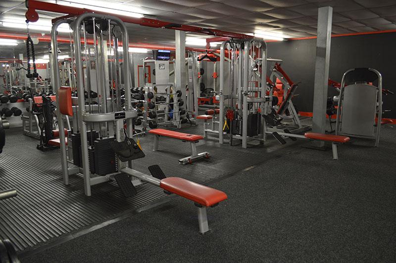 Bodyworld Jungle Gym 8 Stations